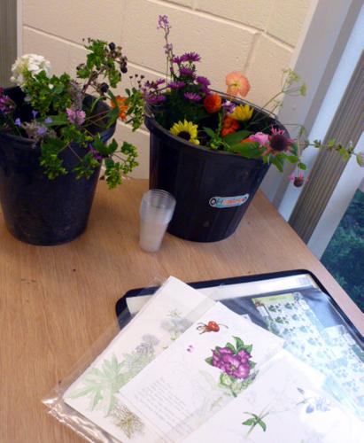 Llandrindod, art workshop, flowers, workshop, buckets, sketches,