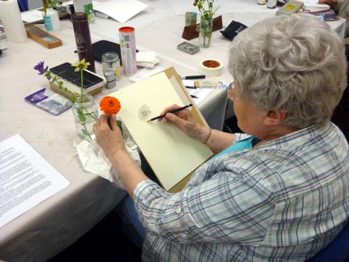 Llandrindod, art workshop, flowers, workshop, calendula, marigold,