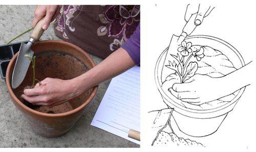 hand, hands, diagram, explanatory illustration, step by step, sxs, drawing hands, illustrating hands,
