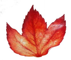 Leaf plants autumn step by step watercolour
