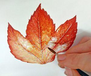lead fall autumn watercolour watercolor botanicalillustration