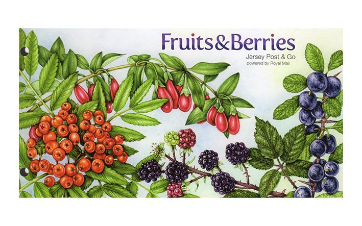 Rowan, blackberries, goji in presentation pack botanical illustrations by Lizzie Harper