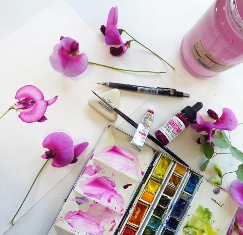 Desk with finished botanical illustration, sweet peas, and paint box