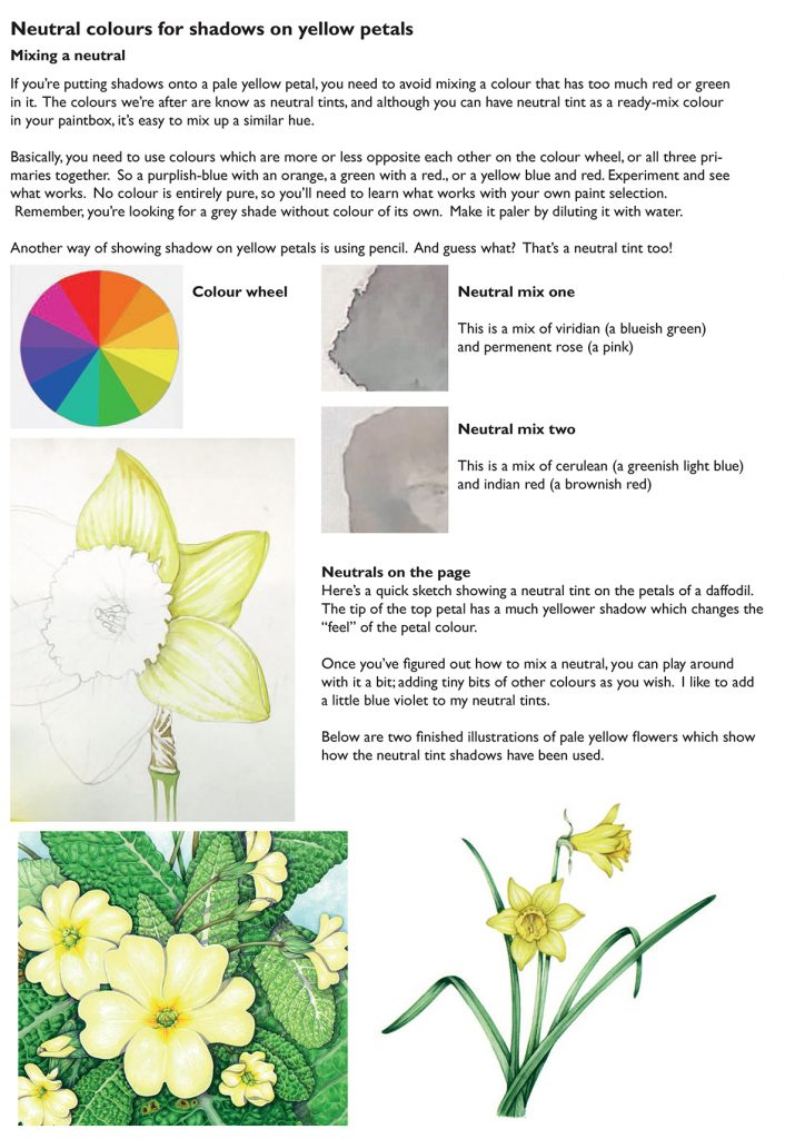 Mixing Neutral Tints and Colours - Lizzie Harper