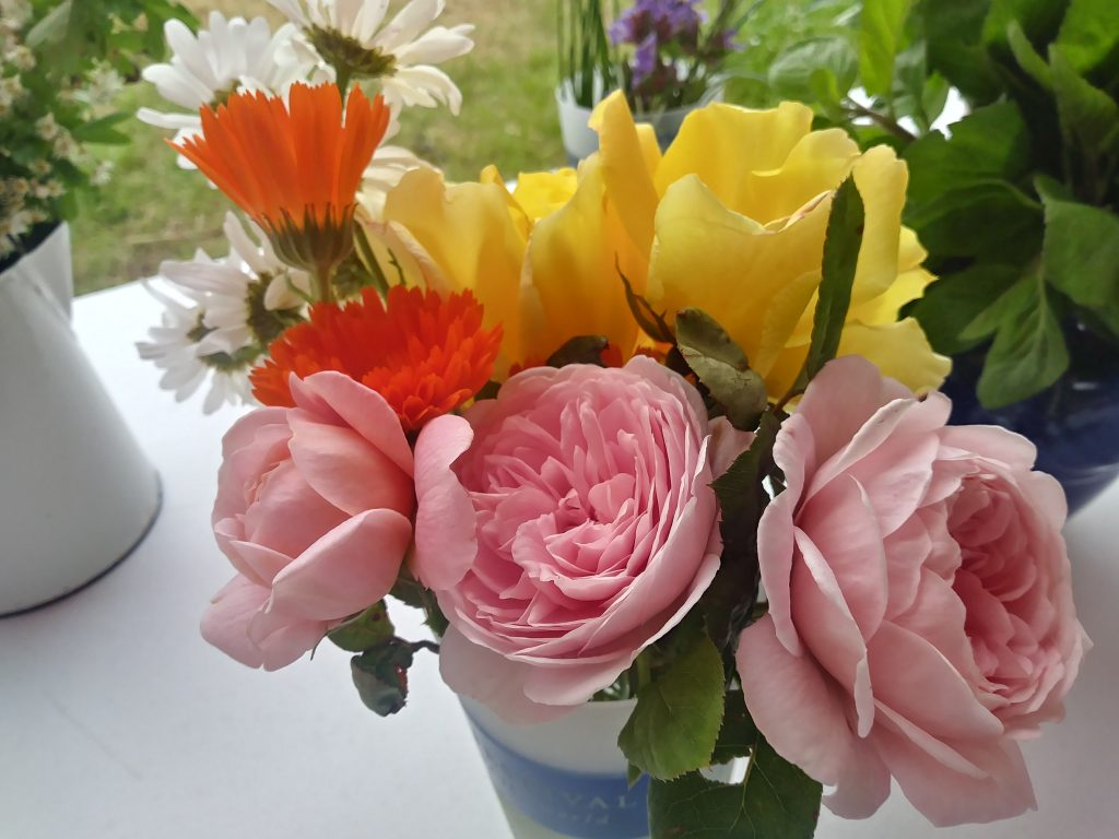 Roses and marigolds at Hay festival